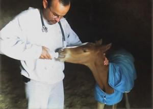 Cuidado intensivo al recién nacido